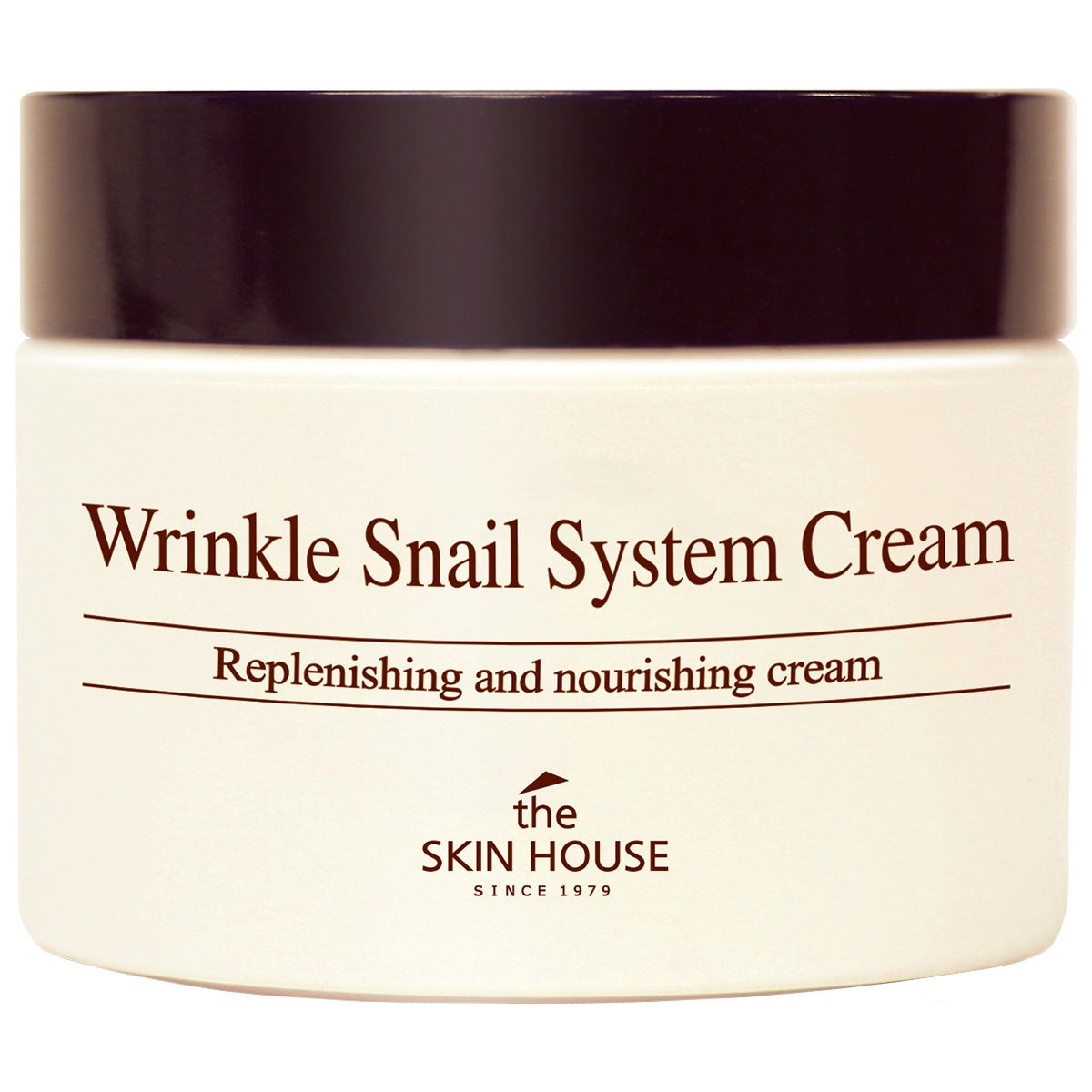 Wrinkle Snail System Cream 100 ml The Skin House K-Beauty